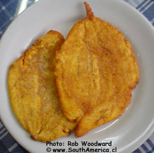 Colombia food typical colombian meals and desserts patacones forumfinder Gallery